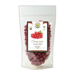 Rybíz červený sušený mrazem 25g lyofilizované ovoce SALVIA