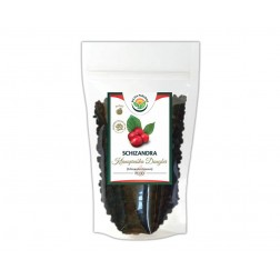 Schizandra čínská plod 100g SALVIA PARADISE