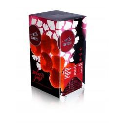 Čaj Santee Malina + Ginkgo 20x2,5g