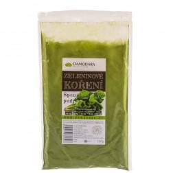 Zeleninové koření Kopr PUDR 100g Damodara